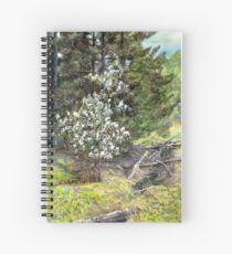 spring in the wood Spiral Notebook