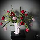 Tulip Shadows by Rosemary Sobiera