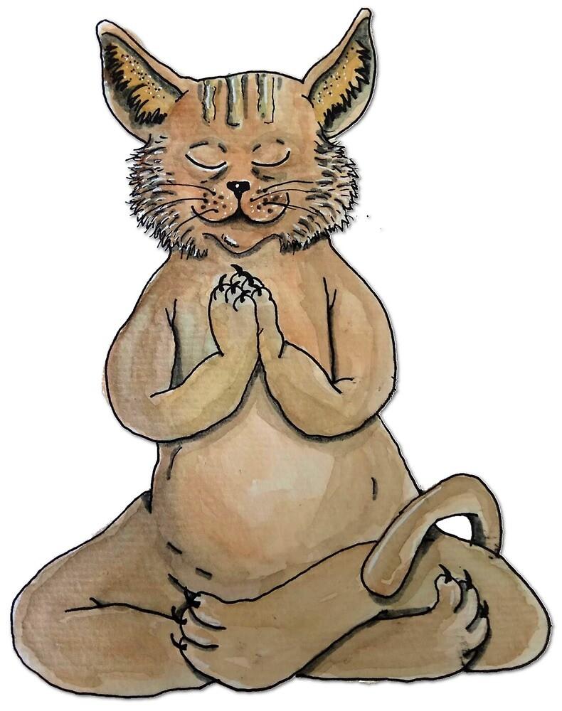 «Gato Yogui» de laramaktub