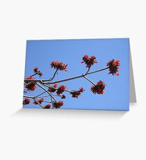 Reach For The Clouds Greeting Card