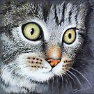 Gigi My Cute Pet Kitten  by Simon Mark Knott * Simbird *