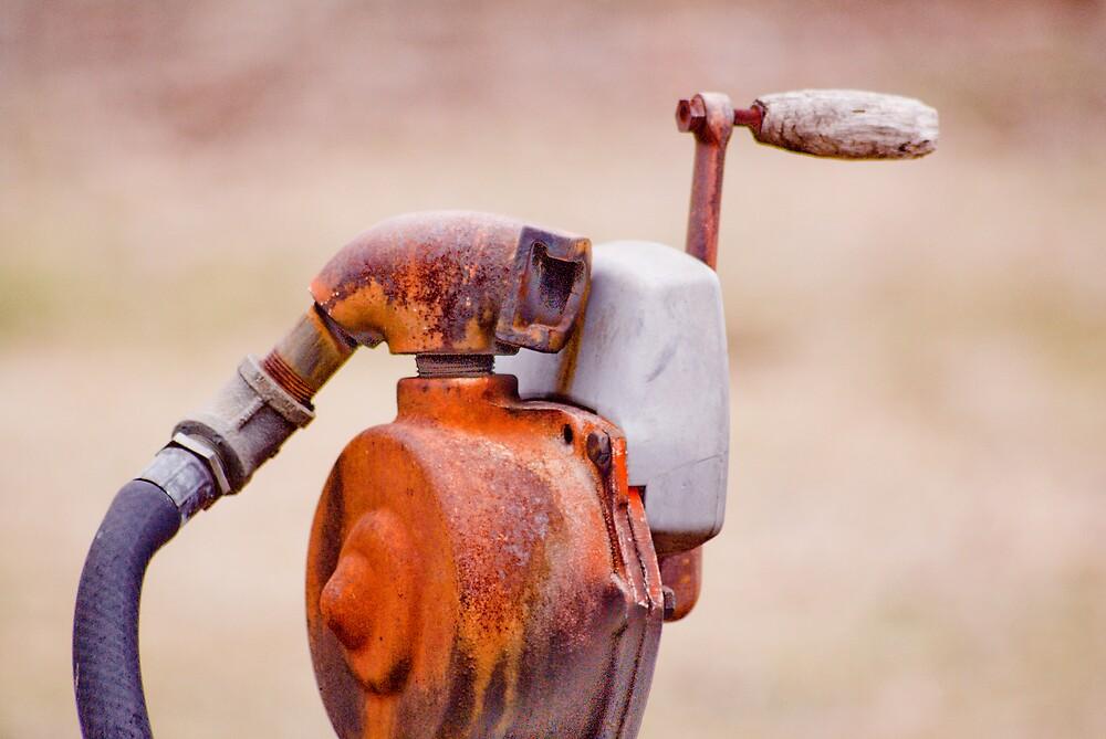 Pump Head by Rod  Adams