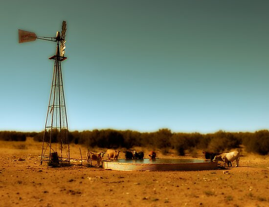 Cowboy Infinity Pool by FortPhoto