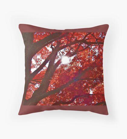 Autumn Illuminated ! Throw Pillow