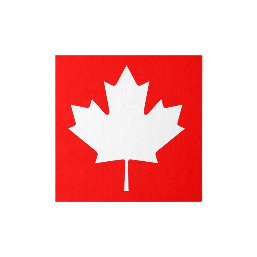 maple leaf canada canadian white pure u0026 simple canadian flag