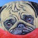 Pug on a Red Rug  by Simon Mark Knott * Simbird *