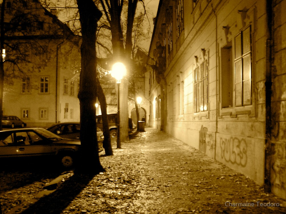 Bright Lights & Lonely Streets by Charmaine Teodoro