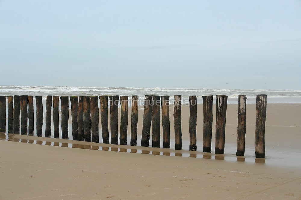 fence by dominiquelandau