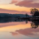 Dawn At The Old Millpond by manateevoyager