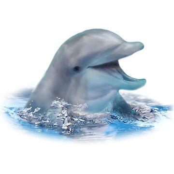 Happy Dolphin by DolphinPod