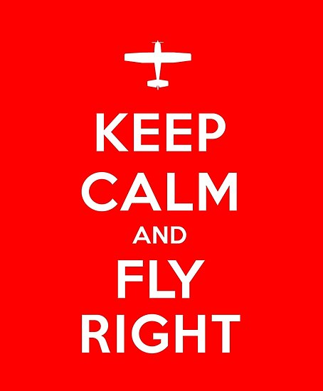 Keep Calm and Fly Right by vidicious