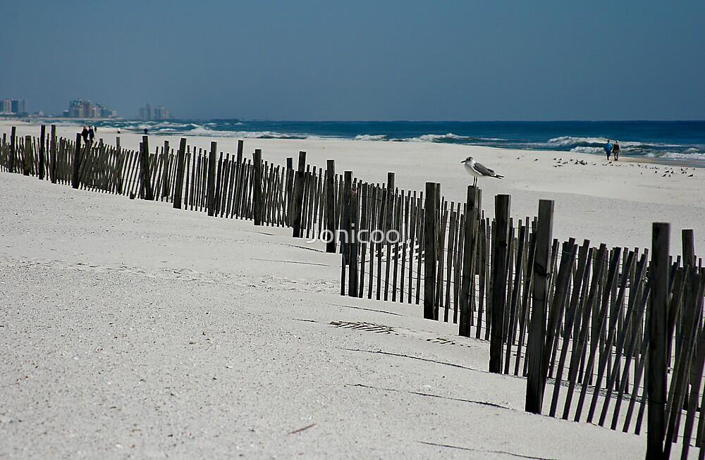Orange Beach, AL by Jonicool