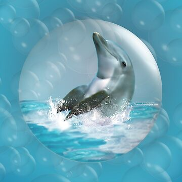 Bubble Dolphin by DolphinPod