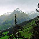 Beautiful Switzerland by Margaret Stevens
