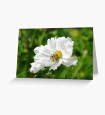 Blond Bee Greeting Card