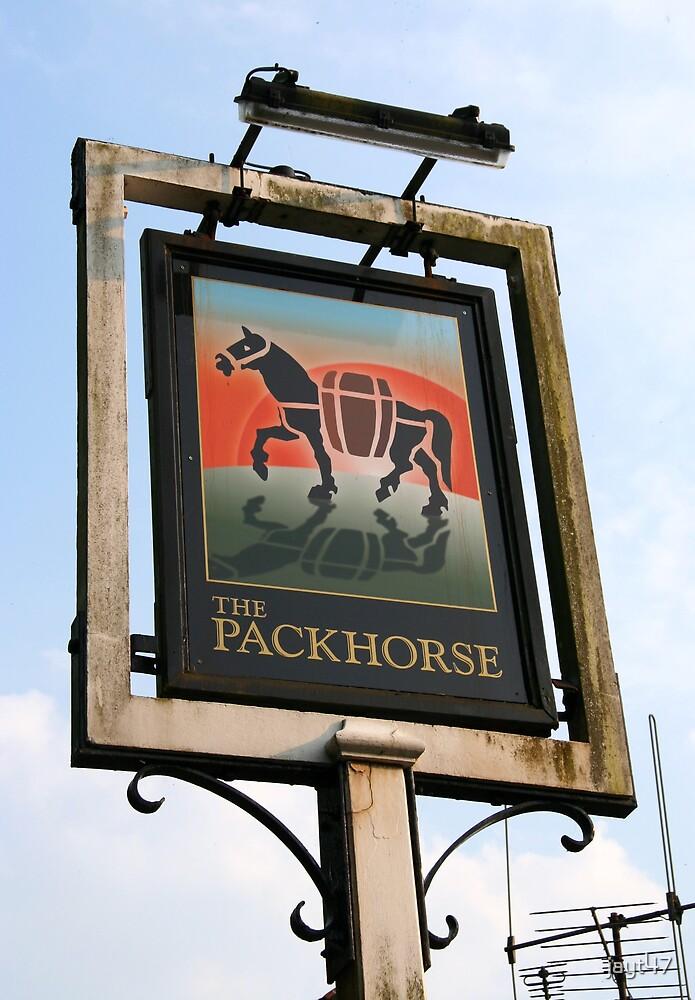 Packhorse Inn by jayt47