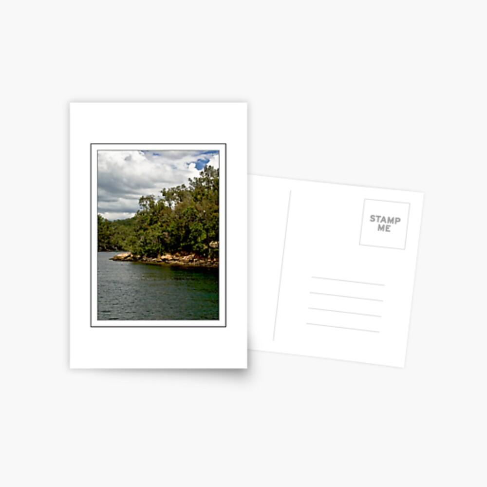 Ku-Ring-Gai Shores Postcard