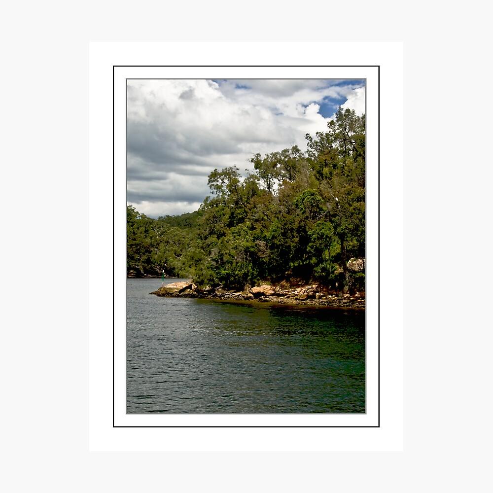 Ku-Ring-Gai Shores Photographic Print