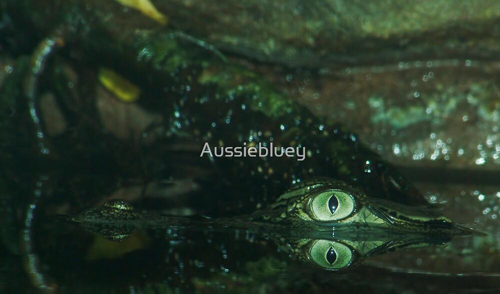 Eye of the Crocodile. by Aussiebluey