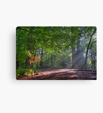 In Brocket Park in Early Autumn Canvas Print