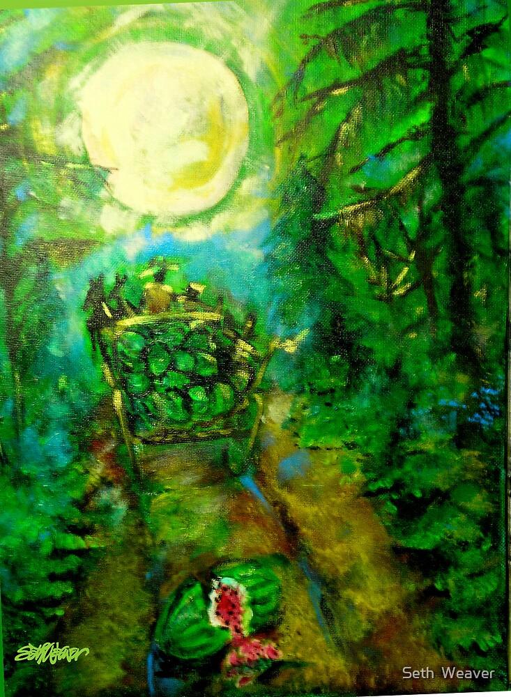 Watermelon Wagon Moon by Seth  Weaver