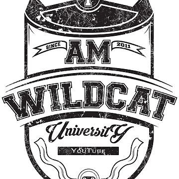 Wildcat University by PokeNarMew