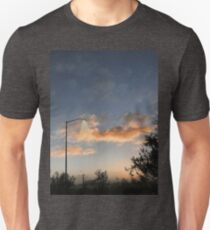 Early Morning in Suburbia Unisex T-Shirt