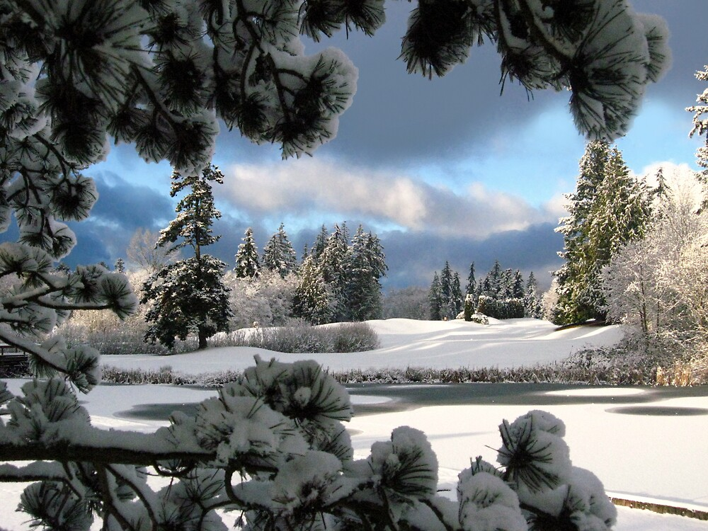 ~ winter blues~ by gabryshak