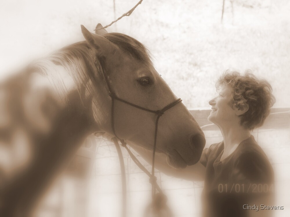 For the love of your horse... by Cindy Stevens
