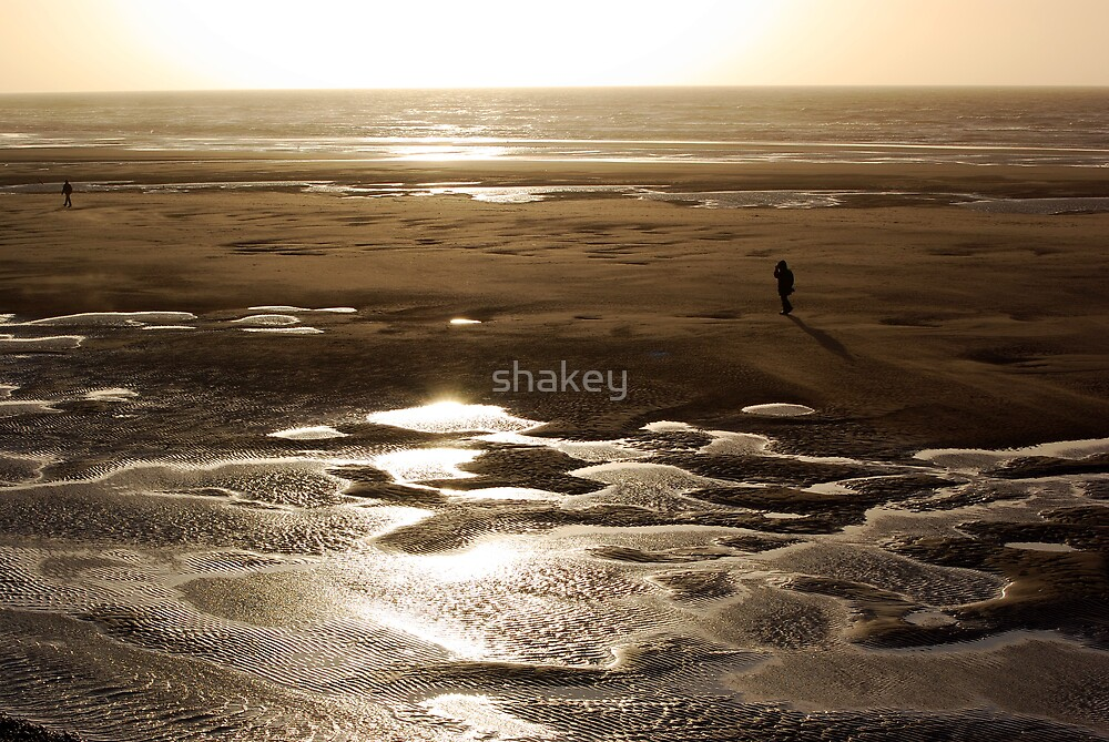 February beach by shakey