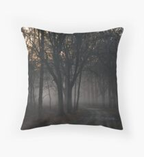 Sometimes we have to go through the twilight Throw Pillow