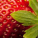 Strawberry by VanOostrum