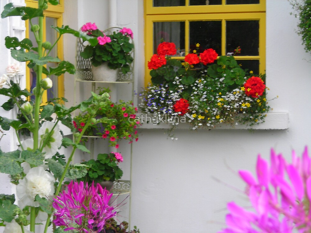 Cottage Window and Flowers by cathyklima