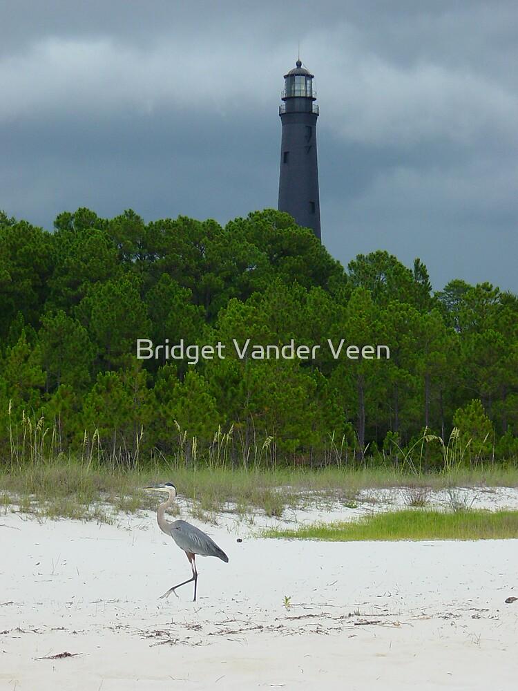 A walk on the beach by Bridget Vander Veen