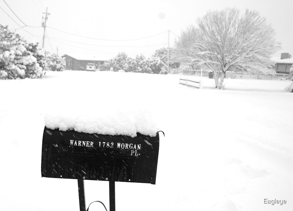 No Mail Today by Eagleye