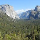 Yosemite National Park by ellismorleyphto