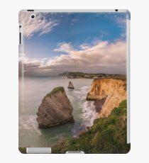 Freshwater Bay Panorama iPad Case/Skin