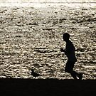 Racing the bird by brilightning
