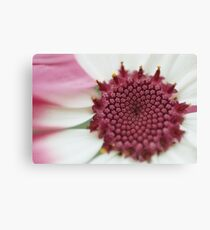 35mm film flower Canvas Print