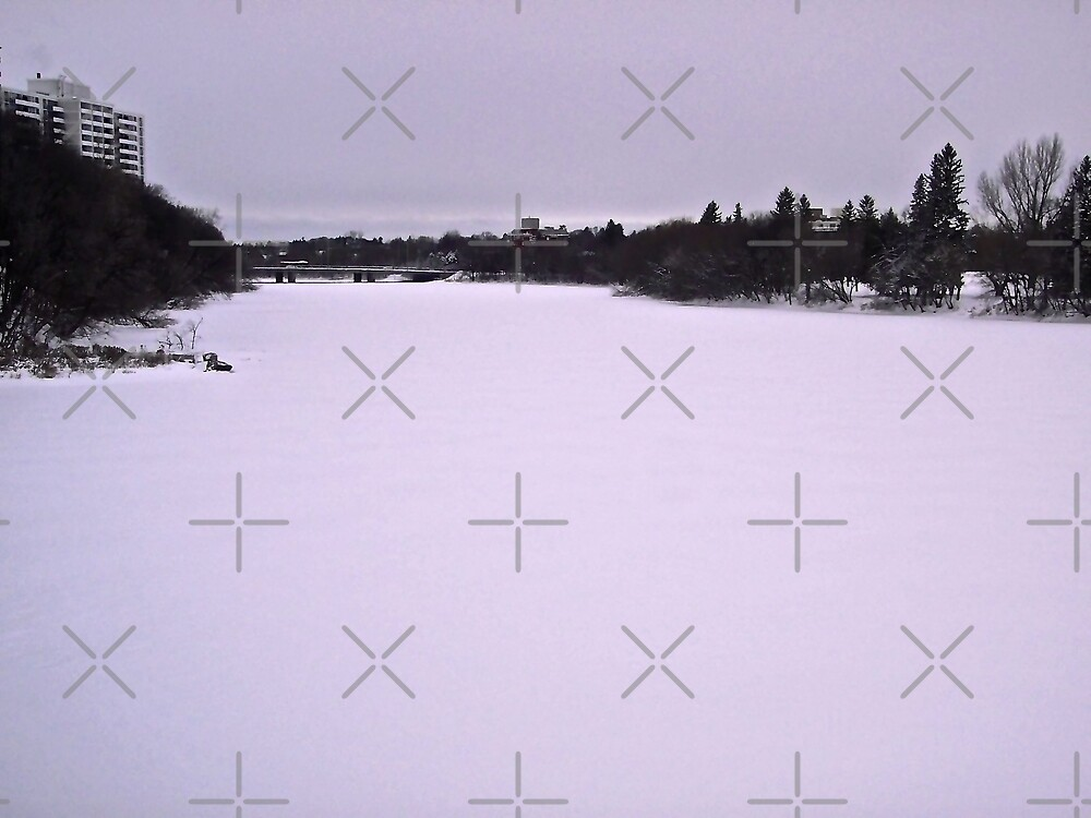 Grey Day in Ottawa by Shulie1