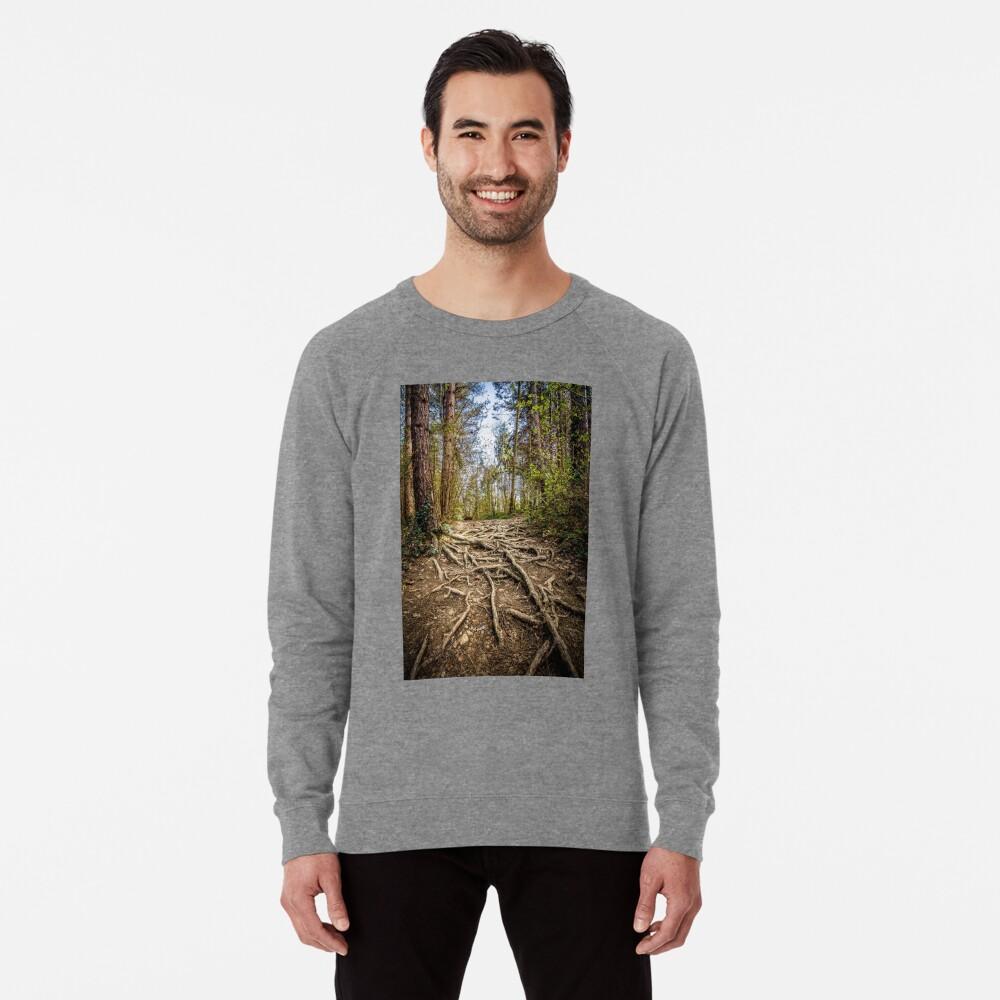 Spaghetti Junction Lightweight Sweatshirt