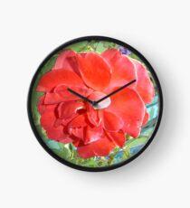 Rose of Red Clock