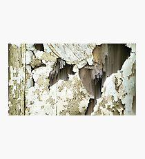 Peel Photographic Print