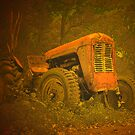 Classic tractor by Rosalie Dale