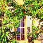 Garden Window by DigitalandPhoto