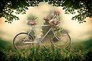 The Old Bicycle by Yannik Hay