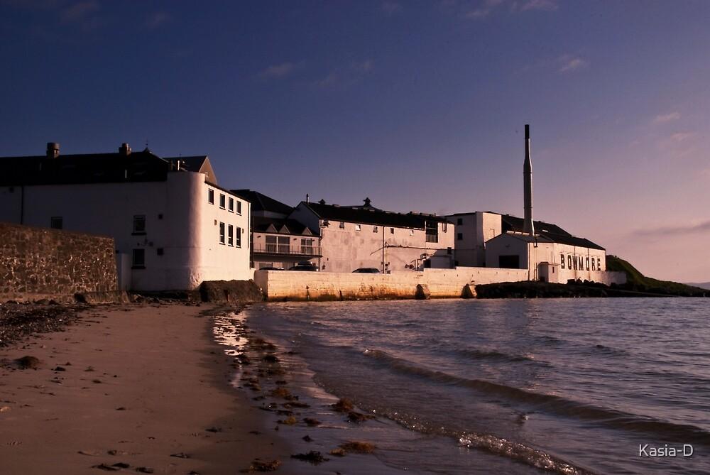 Islay: Bowmore Distillery by Kasia-D