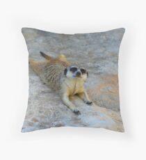 Lazyboy Throw Pillow