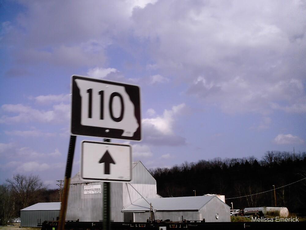 HWY 110 by Melissa Emerick