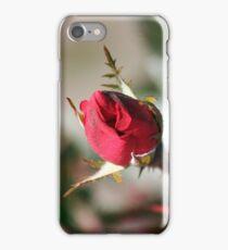 Christmas Rosebud  iPhone Case/Skin